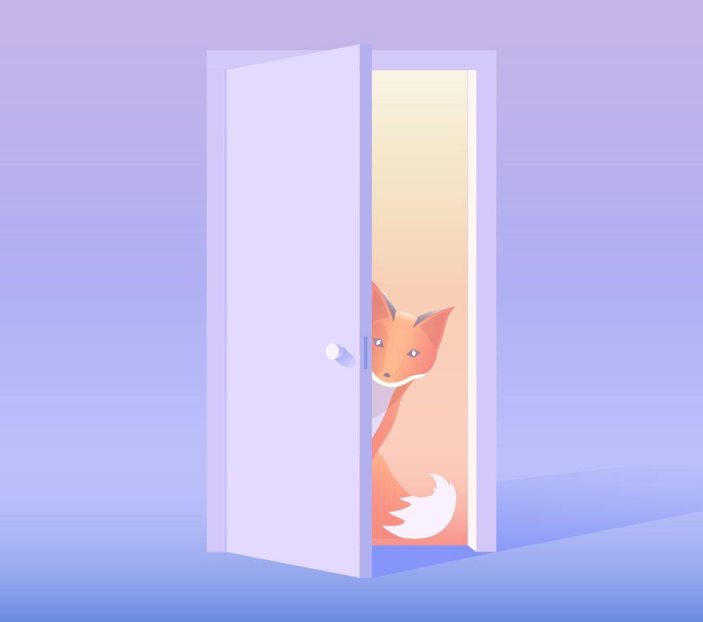 Quinn the fox blog welcome